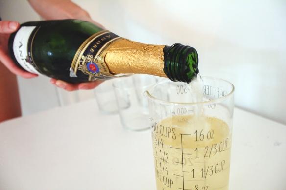 Champagne Lemonade-699